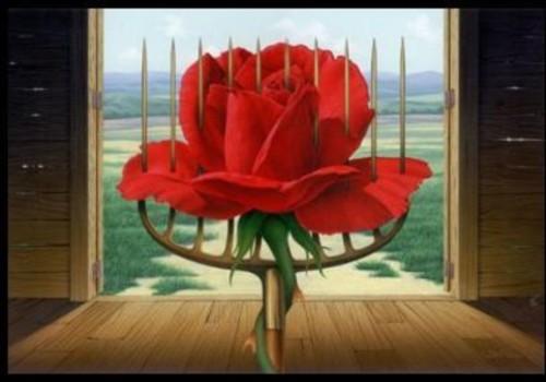 Rosa o Espina?
